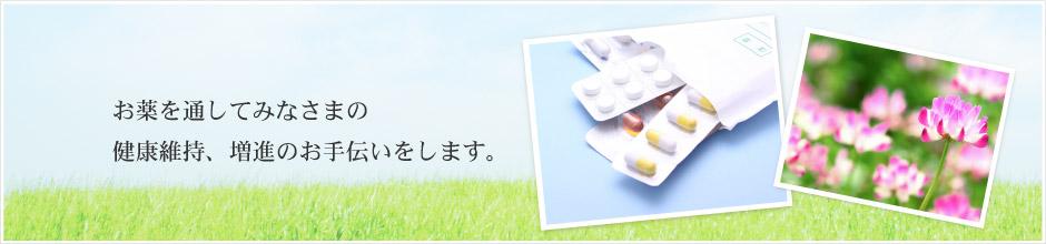 お薬を通してみなさまの健康維持、増進のお手伝いをします。